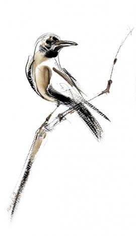 Dusan Rajsic, Bird, Mixed media, 40x25cm