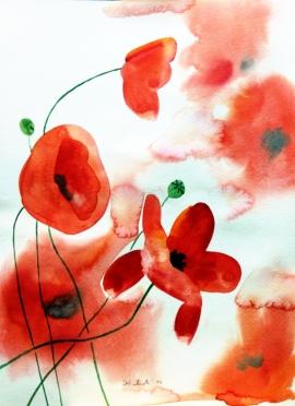 Ivana Zivic, Red Poppies, Watercolour, 35x25cm, £250