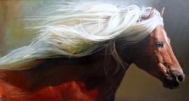 Natasa Kodela, White Mane, Oil on Canvas, 30x50cm