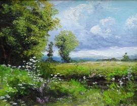 Zoran Zivotic, Meadow, Oil on canvas, 20x30cm