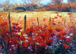 Zoran Zivotic, Red Poppy Fields, Oil on canvas 25x35cm
